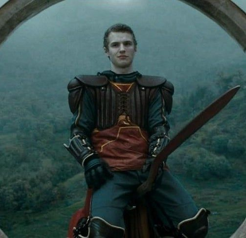 Ranking The 50 Hottest Dudes Of The Harry Potter Movies