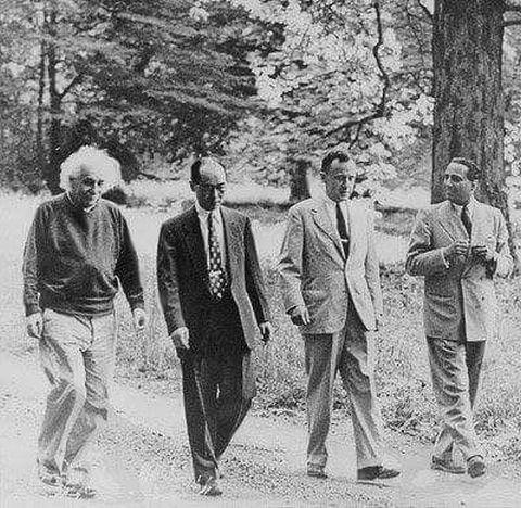 森を散歩するアルベルト・アインシュタインの壁紙・画像
