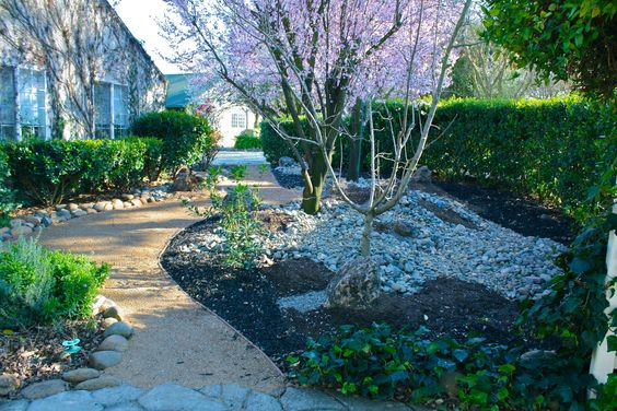 Updating an old landscape. Removing grass, adding rocks and walkway. Planting shade plant bulbs.