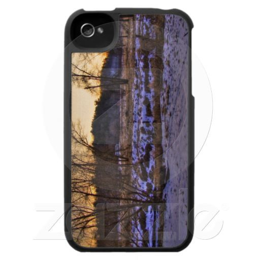 End of Winter Forrest sunset 002 iPhone 4 Cover