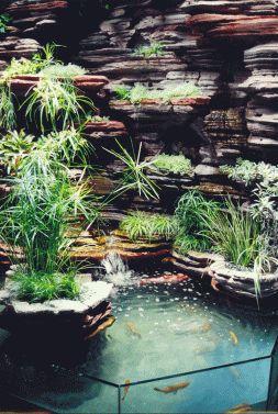 Vertical gardening inspiration (32)