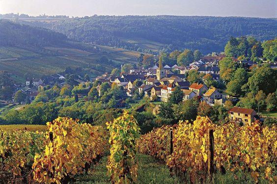 Côte d'Or, Borgonha, França