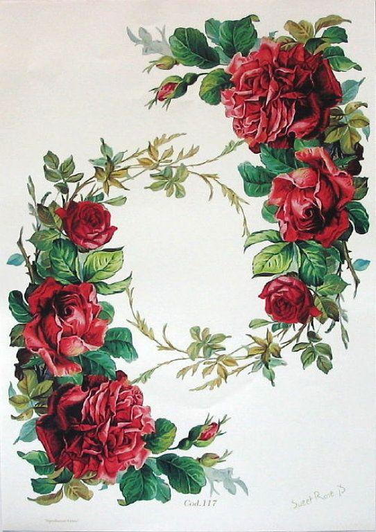 Jardin de rosas letra gallery for Annette moreno y jardin guardian de mi corazon