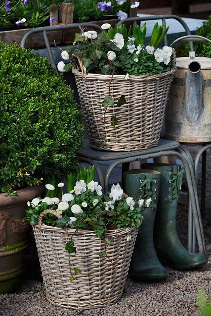 Paniers et fleurs blanches