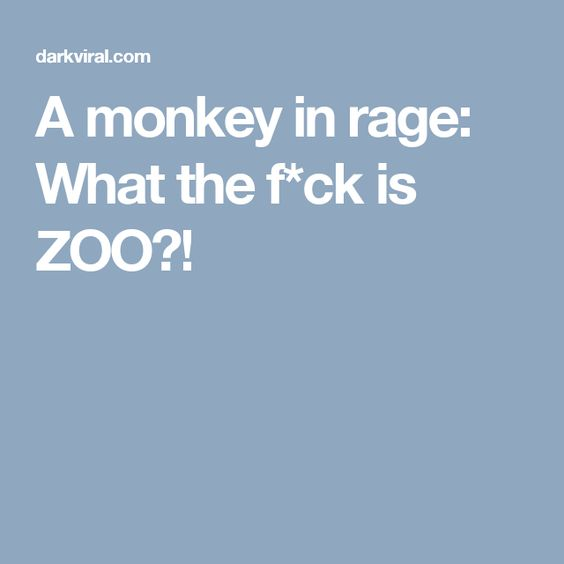 A monkey in rage: What the f*ck is ZOO?!