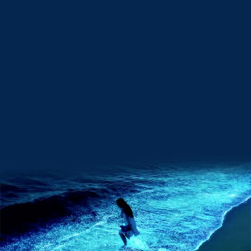 Gif Animé Plaisir Passion Maldives Beach Maldives And Amazing - Maldive island beach glow