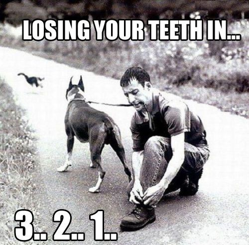 Perdendo todos os dentes em 3.. 2.. 1…