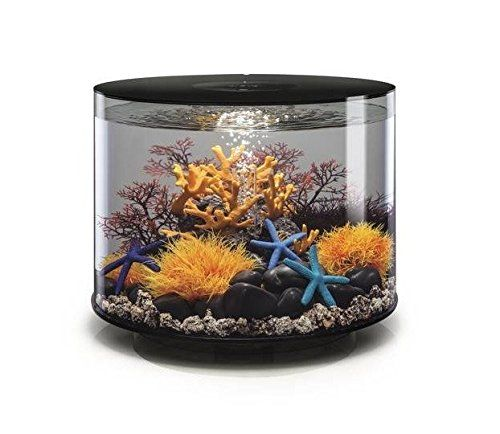 Nice Filter Cartridge A True One Size Fits All Filter For The Biorb Aquariums Constructed Out Of Acrylic 10 Times Stro Aquarium Fish Tank Biorb Fish Tank