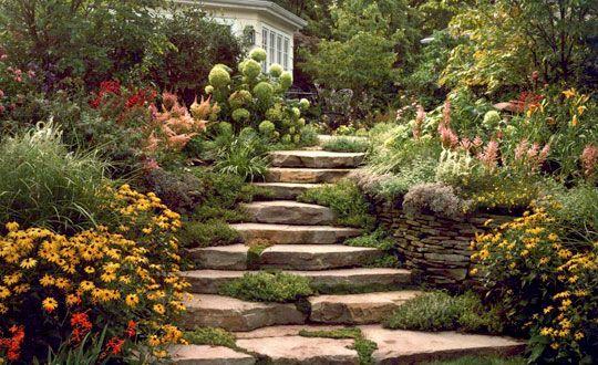 steps, back to nature basking ridge, nj