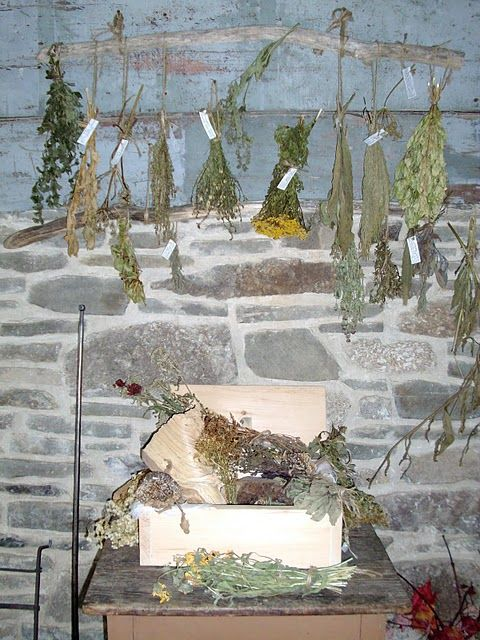 herbs drying at Kings Landing