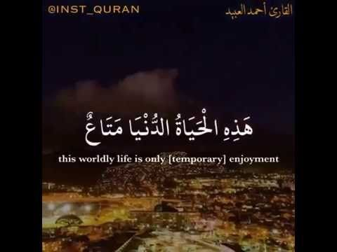 آيه قصيرة معبره لتقصيرنا ١٥ ثانية Youtube Quran Life Enjoyment