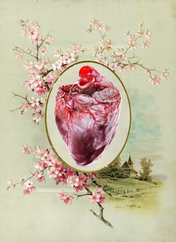 https://flic.kr/p/ad33Vy | Coração Card Coração Colagem Arte