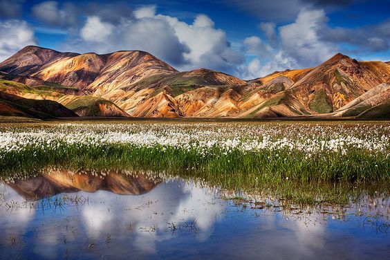 Landmannalaugar Travel Guide Hot Springs Colorful Rhylomite Mountains Hiking Trevor Wants To Go Here Do We Dare Iceland Travel Travel Spot Iceland Island