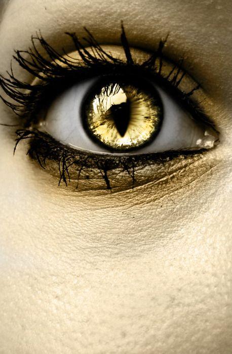 Pin von Miranda Renae' auf Eyes | Pinterest | Gold Augen ...