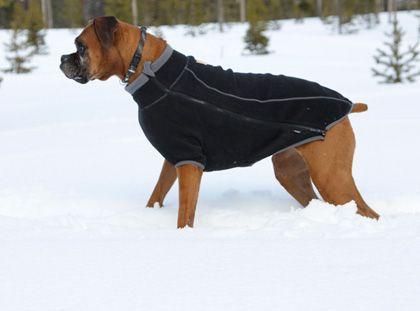 Ruffwear Climate Changer™ Fleece Dog Jacket http://www.ruffwear.com/Climate-Changer-Fleece_2?sc=2&category=12