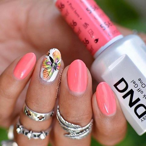 Dnd 556 Coral Reef With Images Dnd Gel Polish Nail Polish