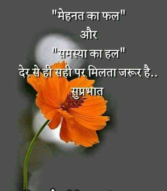 Best 1256 Hindi Life Quotes Whatsapp Dp And Profile Pics Status Downlo Happy Good Morning Quotes Inspirational Good Morning Messages Hindi Good Morning Quotes
