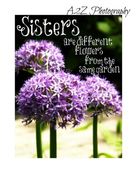 Sisters Are Different Flowers From The Same Garden 8x10 Fine Art Wall Art Home Decor Photo Print