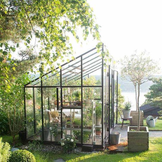 abri de jardin moderne en verre et métal pour les plantes en pots