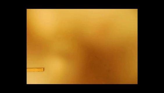 Tohu-Bohu / Les amoureux on Vimeo