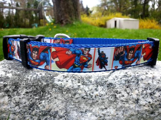 Flying Man Of Steel 1 Inch Width Dog Collar by WillyWoofs on Etsy, $18.00
