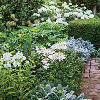 The Side Yard - Small Space Garden, Big Impact - Southern Living