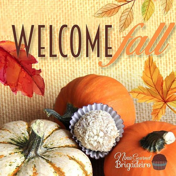 Fall is here finally here! As you probably have noticed you will find pumpkin everything everywhere. So this year we are bringing back our special Pumpkin Spice gourmet Brigadeiros along with our Butterscotch with Pecans gourment Brigadeiros. Try them both. Check out our online store to place your order.  #fall #flavors #Pumpkin #spice #PumpkinSpice #Butterscotch #Pecans #Chocolate #love #Brigadeiros #NotTruffles