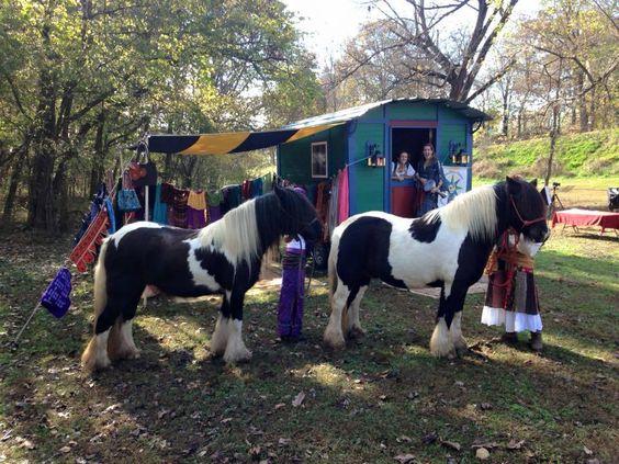 Shamaru horses & wagon: