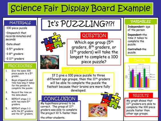 science fair project boards examples | Science Fair Display Board ...