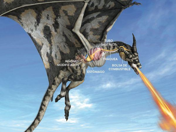 Como lanza fuego el dragon