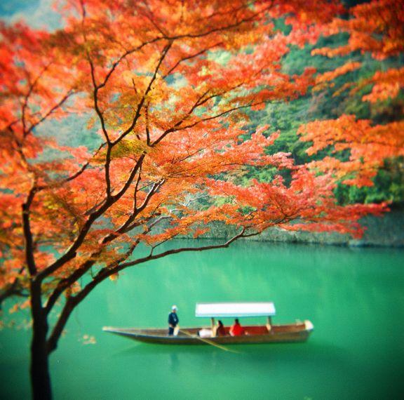 【2016秋 旅行】みんなのおすすめ、集めてみました!情緒溢れる日本の秋旅