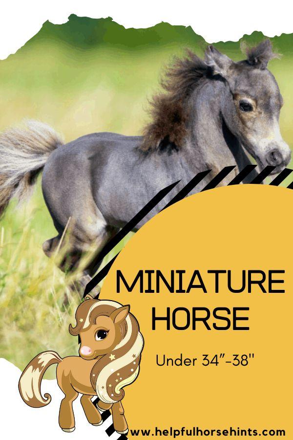 Miniature ho…