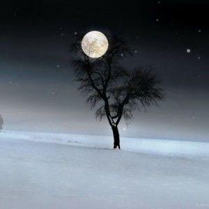 The February Full Snow Moon Is Glistening For You Beautiful Moon Moon Shadow Good Night Moon
