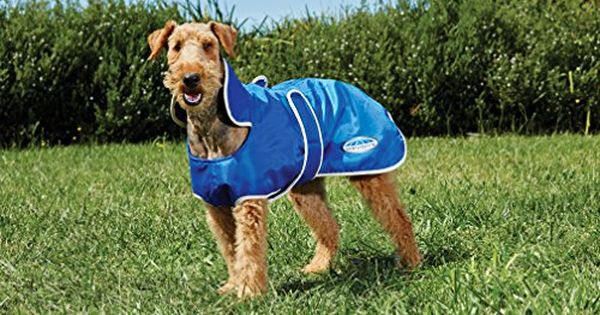 Weatherbeeta Windbreaker 420d Deluxe Dog Coat 22 Bluecream Read More Reviews Of The Product By Visiting The Link On The I With Images Dog Coats Fleece Coat Dog Blanket
