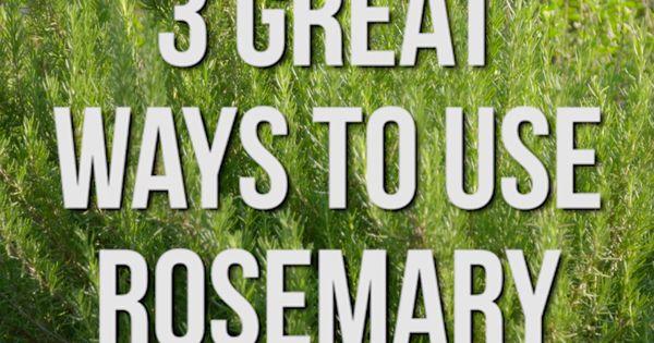 3 Great Ways To Use Rosemary Hgtv Videos Pinterest