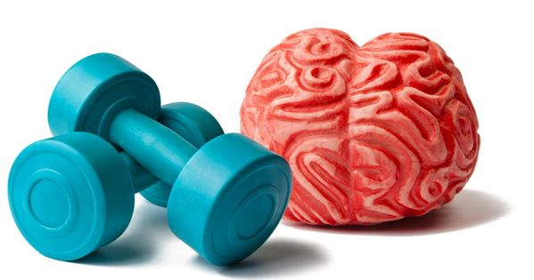 New research shows that intense physical activity increases levels of a protein that helps brain cells grow and function better. This may improve memory.