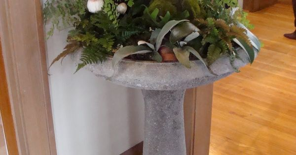 indoor birdbath planter...neat idea!