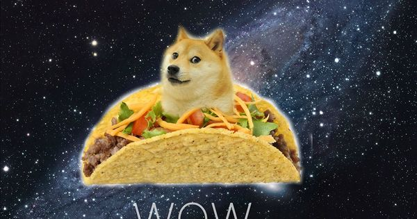 14011 doge in space - photo #29