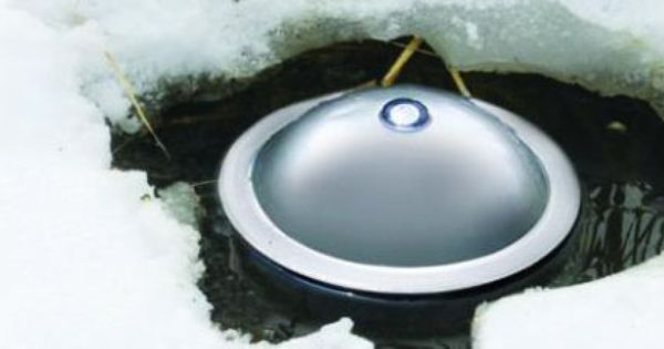 Top 10 Pond Winterizing Mistakes Backyard Ponds And Water Features Pinterest Pond Heater