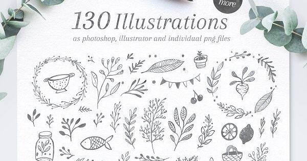 Poppit & Finch Fonts & hand-drawn Illustrations by Nicky Laatz