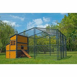 Producer S Pride Defender Chicken Coop Up To 14 Chickens At Tractor Supply Co Urban Chicken Farming Chicken Coop Building A Chicken Coop