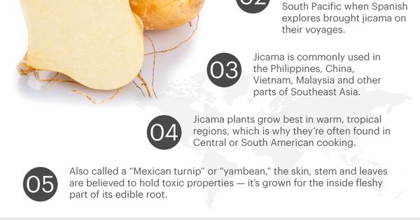 Jicama: Full Of Prebiotic Fiber, It Helps Weight Loss