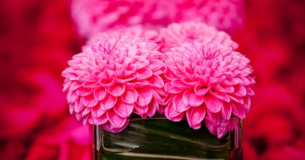 #PINK! :) Floral centerpieces Decor Wedding Find the best Toronto and the
