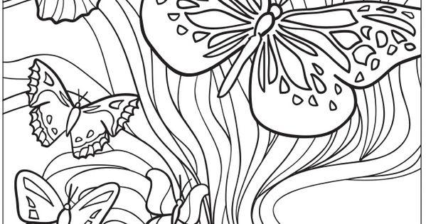 Volwassenen Kleurplaat Vlinders