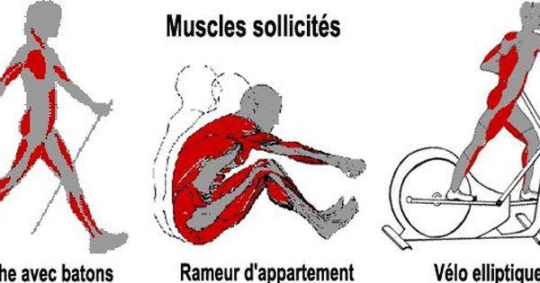 muscles sollicit s en marche avec b tons rameur d. Black Bedroom Furniture Sets. Home Design Ideas