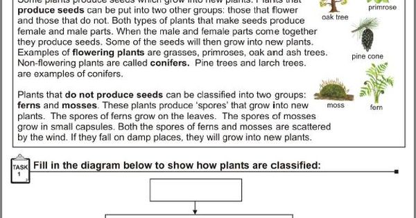 plant reproduction worksheet science worksheets pinterest. Black Bedroom Furniture Sets. Home Design Ideas