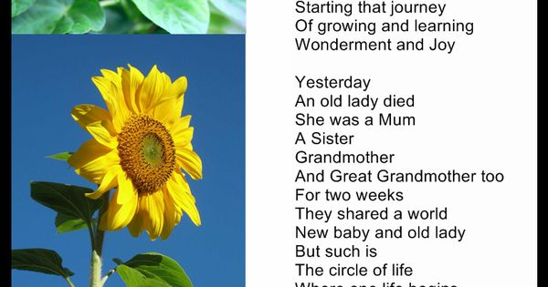 Poems About Life | Christin's Poems About Love And Life ...