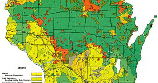 Early vegetation of Wisconsin map from 1965 Maps Pinterest Wisconsin