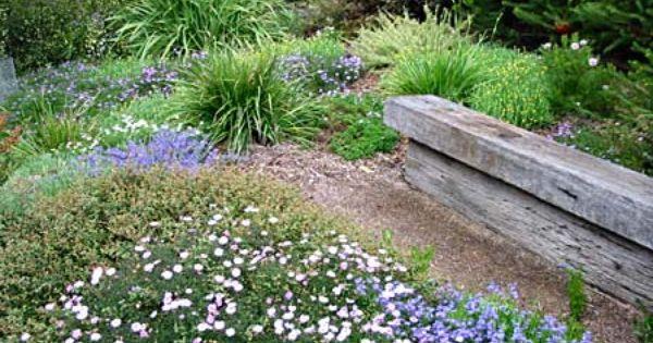 australian native garden inspiration