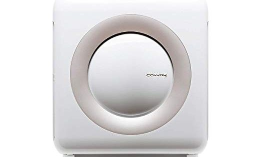 Amazon Com Coway Ap 1512hh Mighty Air Purifier With True Hepa And Eco Mode In White Home Kitchen Air Purifier Hepa Air Purifier Purifier